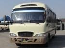 Микроавтобус Автобус Higer Trumpf Junior