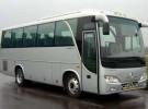 Микроавтобус Автобус Golden Dragon Town Cruiser