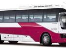 Аренда Автобус Hyundai Aero Queen